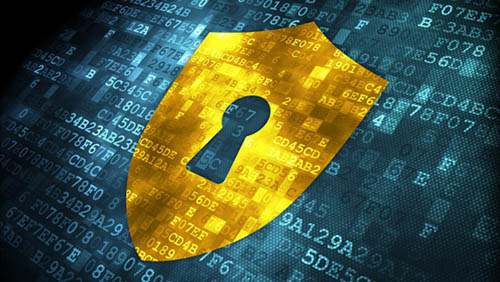 cyber_security-web